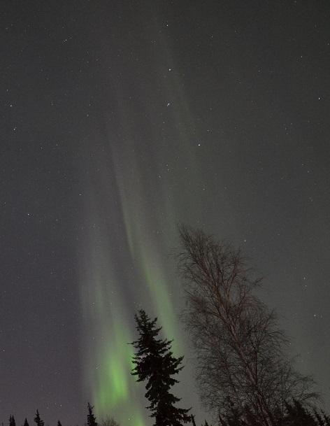 lynn_aurora