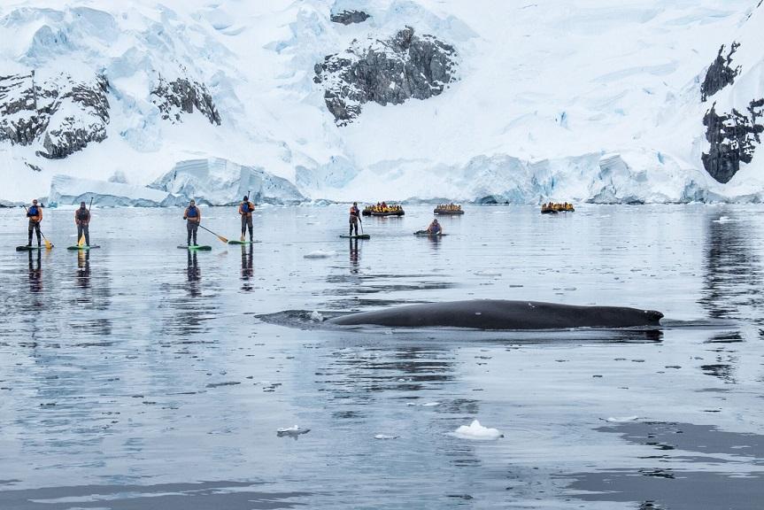 Antarctica Eclipse 2021 Cruise Tours Ponant Cruises